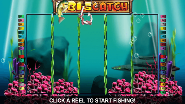 Big Catch 8